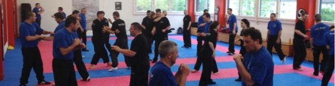 2. Krav Maga Self Protect Trainerkurs 2014