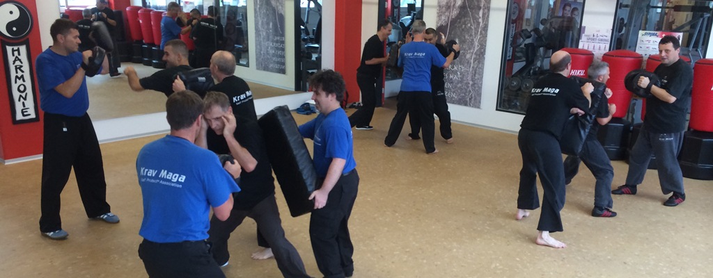 3. Krav Maga Self Protect Advanced Instruktoren Lehrgang in Liestal 2014